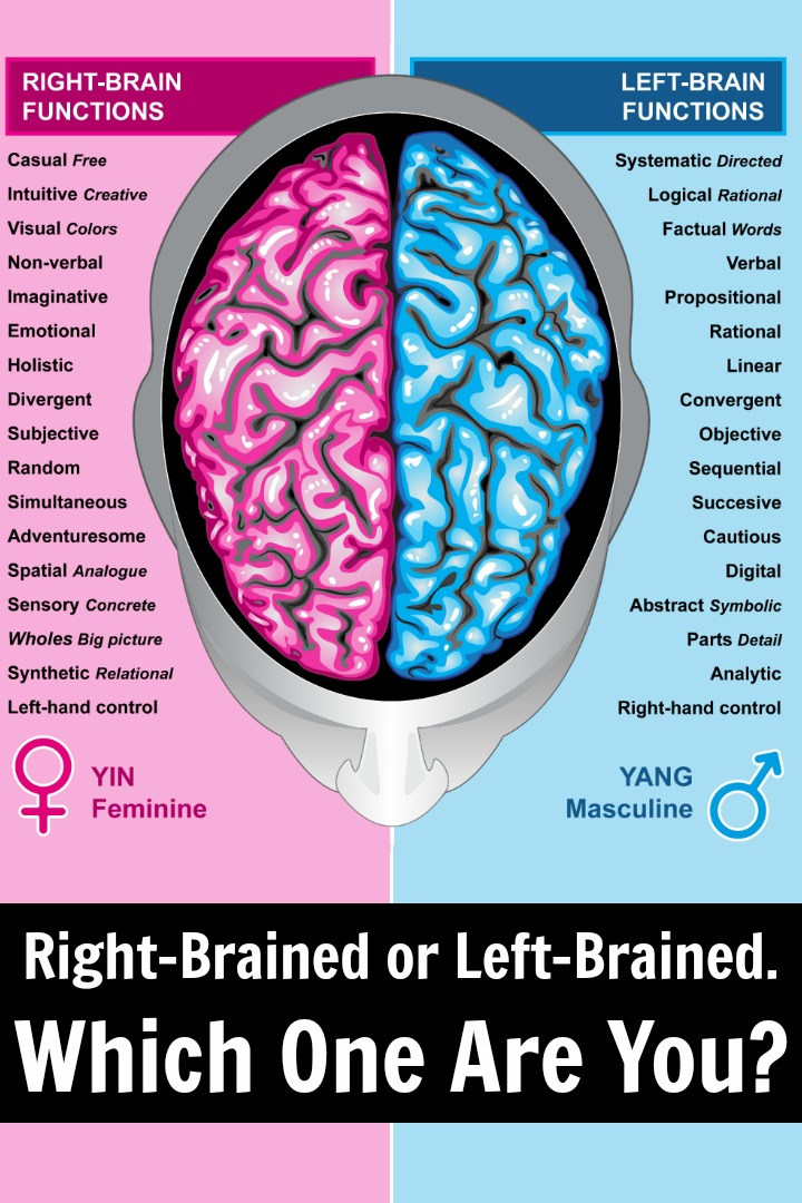 Right-Brained or Left-Brained. Which One Are You? ~